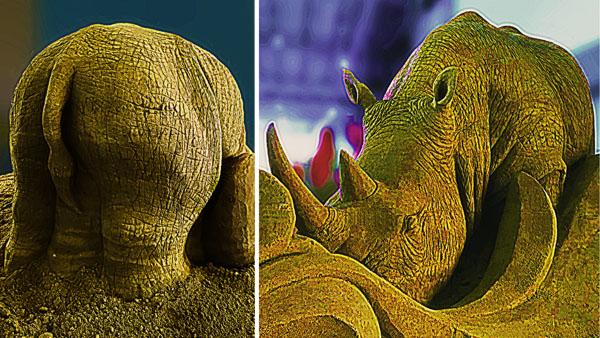 https://ussandsculpting.com/wp-content/uploads/2019/01/Frame-18-Rhino600.jpg